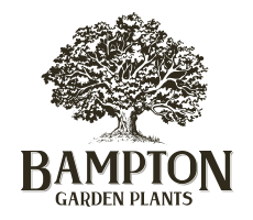 Logo tuincentrum Bampton Garden Plants