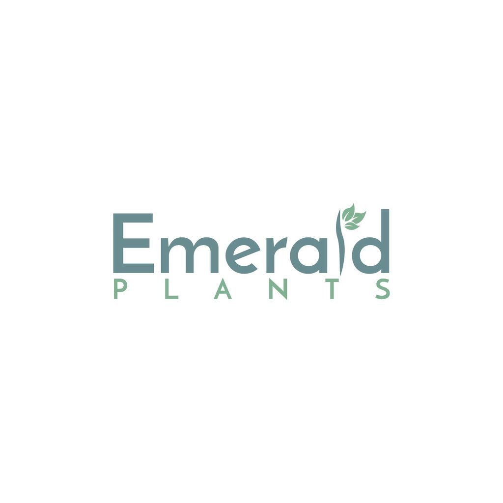 Logo tuincentrum Emerald Plants