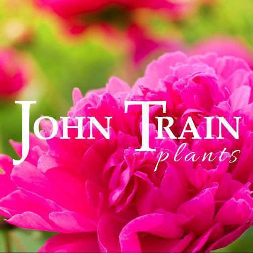 Logo tuincentrum John Train Plants