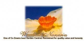 Logo tuincentrum Woodhall Nurseries