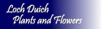Logo Loch Duich Plants