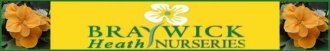Logo Braywick Heath Nursery & Garden Centre