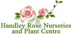 Logo tuincentrum Handley Rose Nurseries