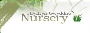 Logo tuincentrum Dyffryn Gwyddno Nursery