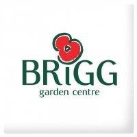Logo tuincentrum Brigg Garden Centre-British Garden Centres