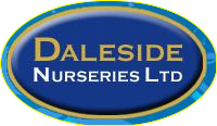 Logo tuincentrum Daleside Nurseries