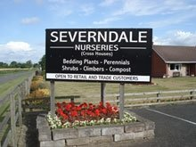 Logo tuincentrum Severndale Nurseries
