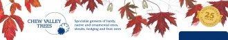 Logo tuincentrum Chew Valley Trees