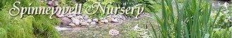 Logo tuincentrum Spinneywell Nurseries