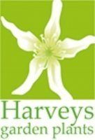 Logo tuincentrum Harveys Garden Plants