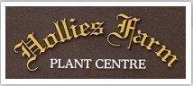Logo tuincentrum Hollies Farm Plant Centre