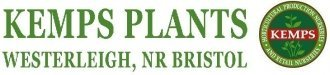 Logo Kemps Plants