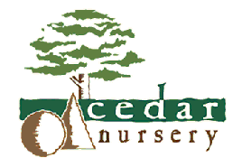 Logo tuincentrum Cedar Nursery
