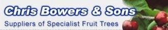 Logo tuincentrum Whispering Trees Nurseries