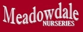 Logo tuincentrum Meadowdale Nurseries