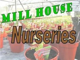 Logo Mill House Nurseries