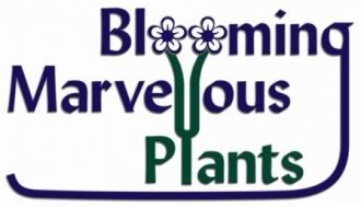 Logo Blooming Marvellous Plants