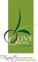 Logo Olive Grove Nurseries