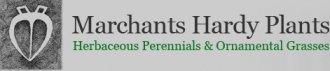 Logo tuincentrum Marchants Hardy Plants