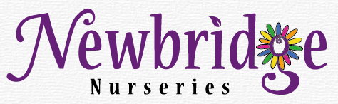 Logo tuincentrum Newbridge Nurseries