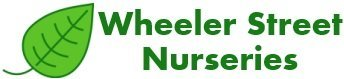 Logo tuincentrum Wheeler Street Nursery