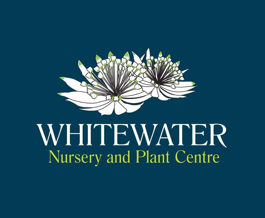 Logo tuincentrum Whitewater Nursery and Plant Centre